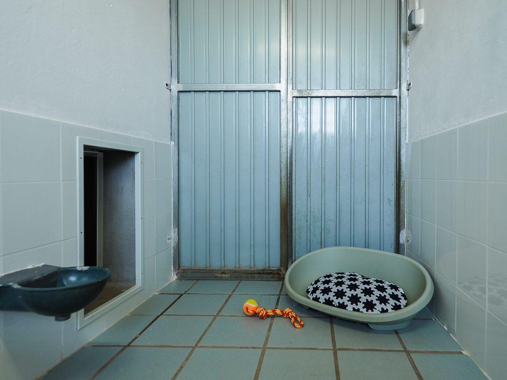 habitaciones guardería la torre canina
